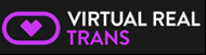 virtualrealtrans-logo